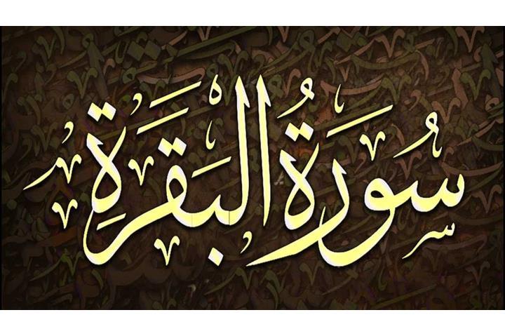 هل قراءة سورة البقرة يوميا تعادل قراءة القرآن كاملا دار الافتاء تجيب
